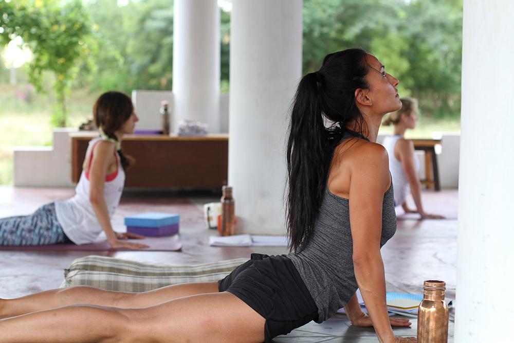 Himalayan Hatha Yoga Teacher Training Course 2020 India Yogisattwa